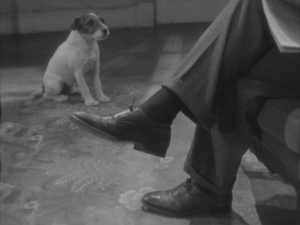 Today's performer I almost forgot to mention, so I had to add a screen capture, is  Uggie the Dog, he's helarious.