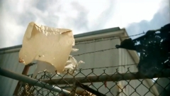 Paper Bag on a fence